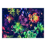 Colourful Plants Poster