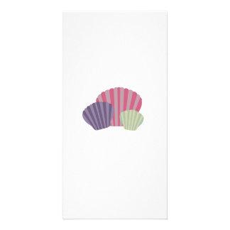 Colourful Shells Custom Photo Card