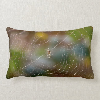 Colourful spider and web photograph pillow