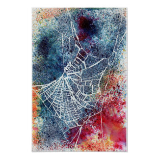colourful spider web poster