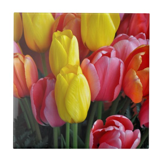 Colourful spring tulips bouquet small square tile