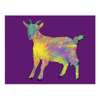 Colourful Starburst Art Goat Funny Animal design Postcard
