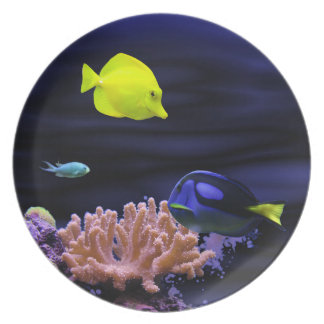 Colourful Tropical Fish Plate