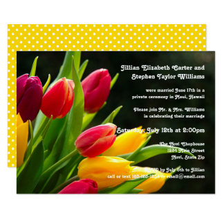 Colourful Tulips Photo -3x5Wedding Announcement