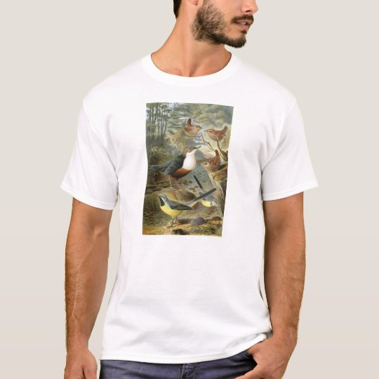 Colourful vintage illustration of birds shirt