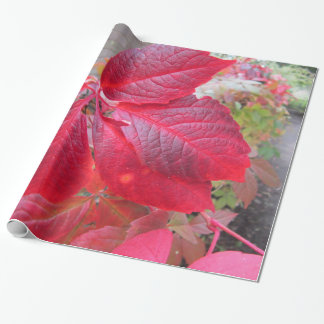 Colours of Autumn Wrapping Paper
