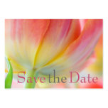 Colours of Spring Tulip Save the Date Mini Card Business Card
