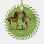Colt and Foal Playing Ornament