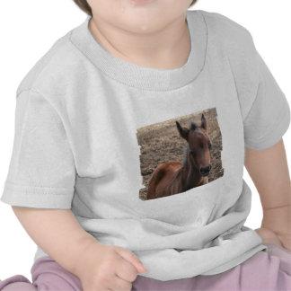 Colt Photo Baby T-Shirt