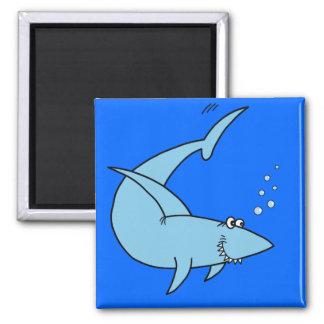 Colter's Shark Magnet