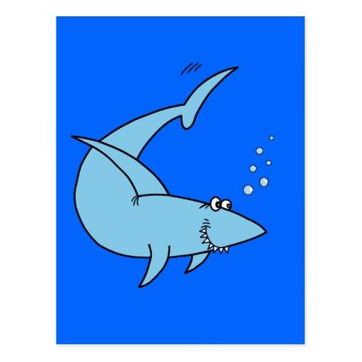 Colter's Shark Postcards