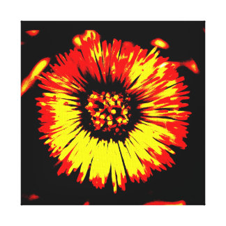 COLT'S FOOT STRETCHED CANVAS GALLERY WRAP CANVAS