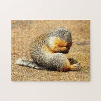 Columbia Ground Squirrel Jigsaw Puzzle