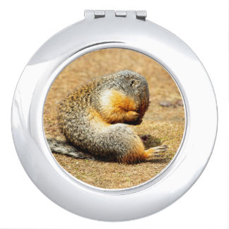 Columbia Ground Squirrel Vanity Mirror