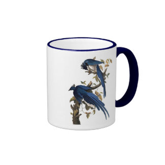 Columbia Jay | John James Audubon Ringer Coffee Mug