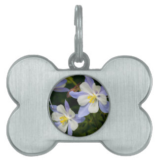 Columbine Cluster Pet Tag
