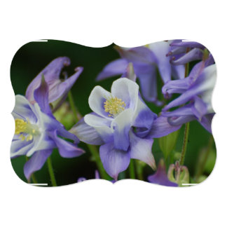 "Columbine Flowers 5"" X 7"" Invitation Card"