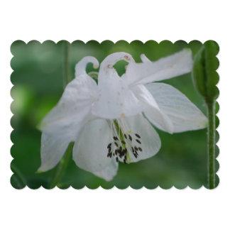 Columbine Flowers 5x7 Paper Invitation Card