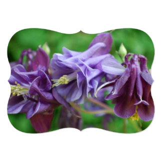 Columbine Flowers Personalized Invitations