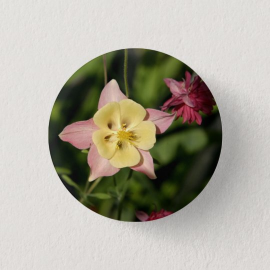 Columbine with Star Shaped Leaves 3 Cm Round