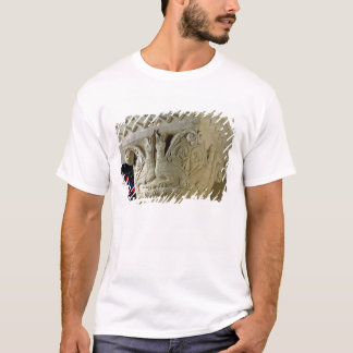Column capital bearing symmetrically arranged grot T-Shirt