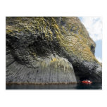 Columnar basalt formation, Akun Island, Alaska Post Cards