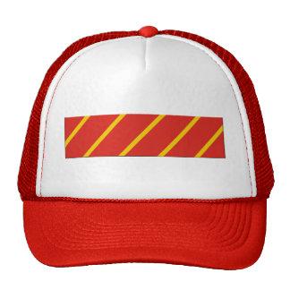 Combat Action Ribbon Trucker Hats