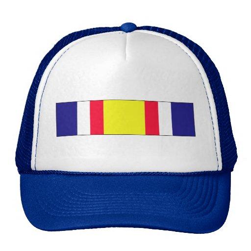Combat Service Commemorative Ribbon Mesh Hats