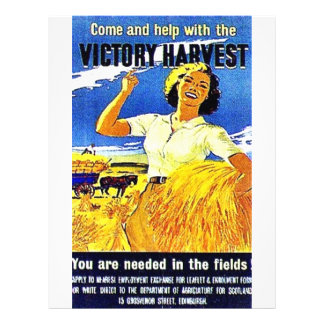 Come And Help With The Victory Harvest 21.5 Cm X 28 Cm Flyer