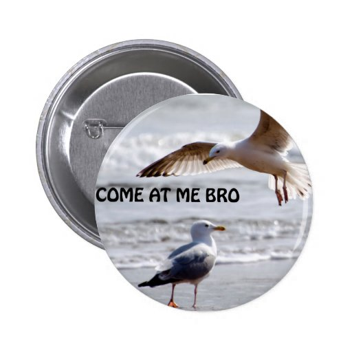 Come at me bro! Seagull Version Pinback Buttons