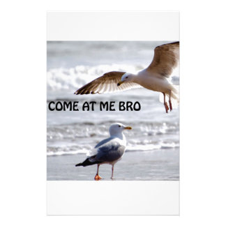 Come at me bro Seagull Version Stationery Paper