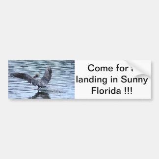 Come for a landing in Sunny Florida !!! Bumper Sticker