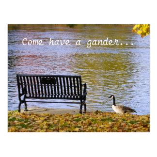 Come have a gander... postcard
