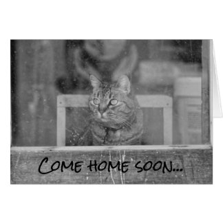 Come home soon cat waiting greeting card