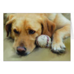 Come on Lets Play Fetch Greeting Cards