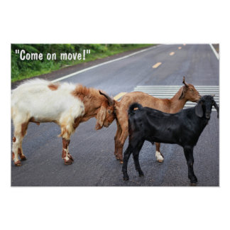 """""""Come on move!"""" Poster"""