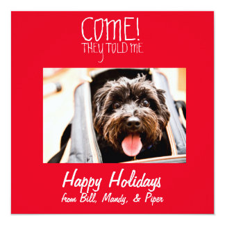 COME! Pet Photo Holiday Card 13 Cm X 13 Cm Square Invitation Card