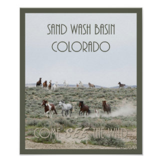 Come SEE The Wild 16x20 Wall Poster