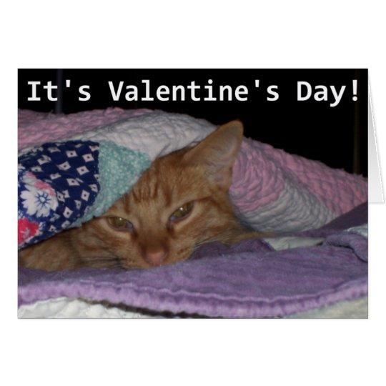 Come Snuggle Cat Valentine Card