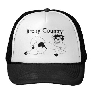 Come... to Brony Country Cap