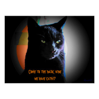 Come To The Dark Side We have catnip Poster