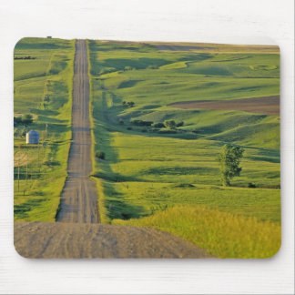 Comertown gravel road in remote northeastern mouse mat