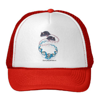 Comfortably Yours Hat