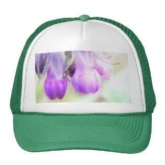 Comfrey Herb - Flowers Cap