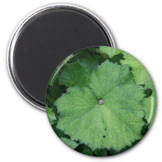 Comfy Snail 6 Cm Round Magnet