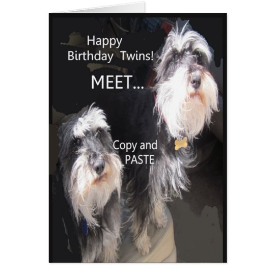 Comical Happy Birthday twins Card