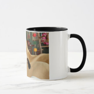Comical Seal Point Siamese Cat Licking It's Nose Mug
