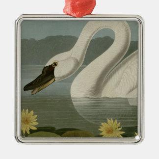 Common American Swan Ornament