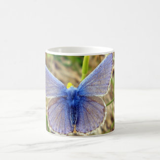 Common Blue Butterfly Bug Mug