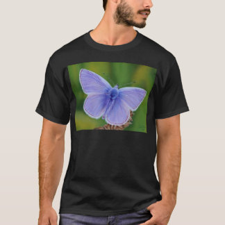 Common Blue Butterfly T-Shirt